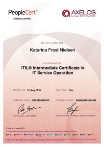 thumbnail of ITIL SO e-Cert